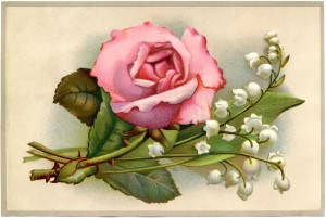 Rose-Lily-Valley-Postcard